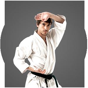 Martial Arts Master Chang's Martial Arts Adult Programs
